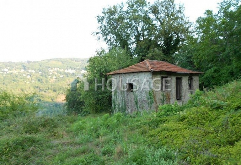 Land for sale in Cherefto, Magnesia, Greece - photo 3