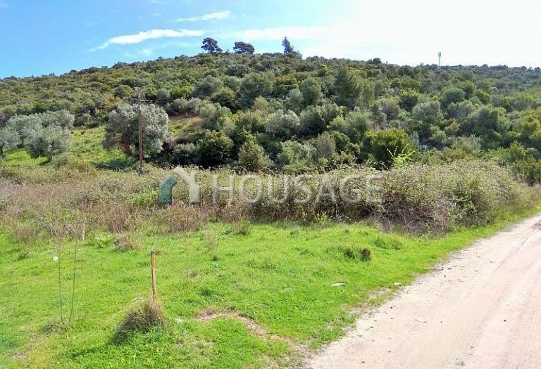 Land for sale in Toroni, Sithonia, Greece - photo 1