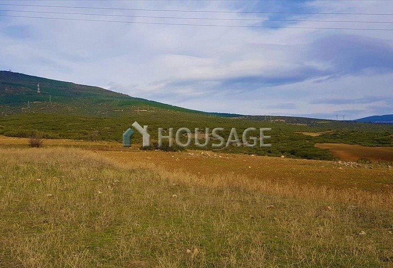 Land for sale in Vasilika, Salonika, Greece - photo 5