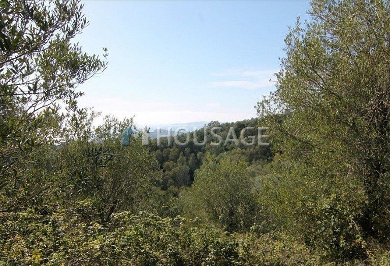 Land for sale in Magoulades, Kerkira, Greece - photo 6
