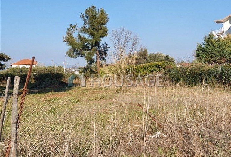 Land for sale in Nea Triglia, Chalcidice, Greece - photo 3