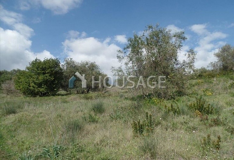 Land for sale in Kato Korakiana, Kerkira, Greece - photo 4