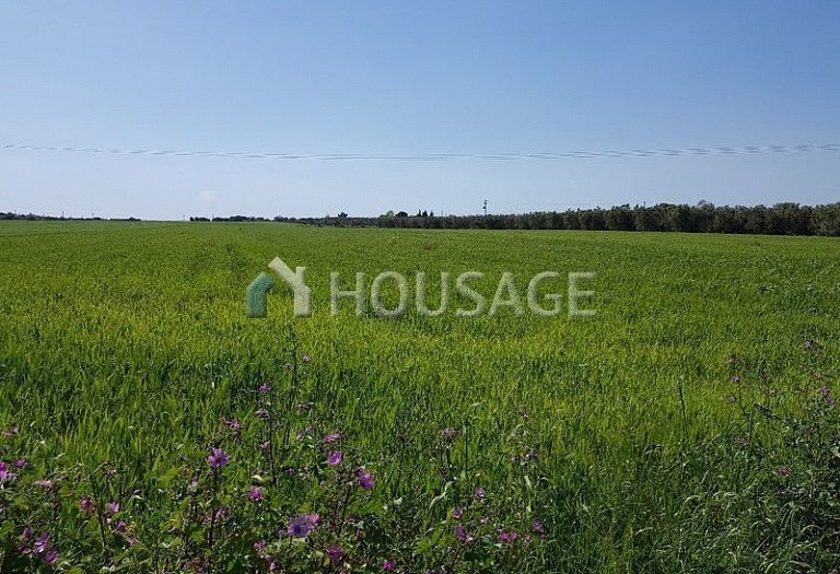 Land for sale in Lagkadas, Salonika, Greece - photo 2