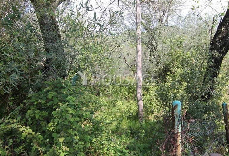 Land for sale in Spartylas, Kerkira, Greece - photo 4