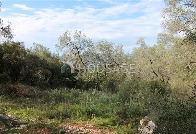 Land for sale in Magoulades, Kerkira, Greece - photo 7