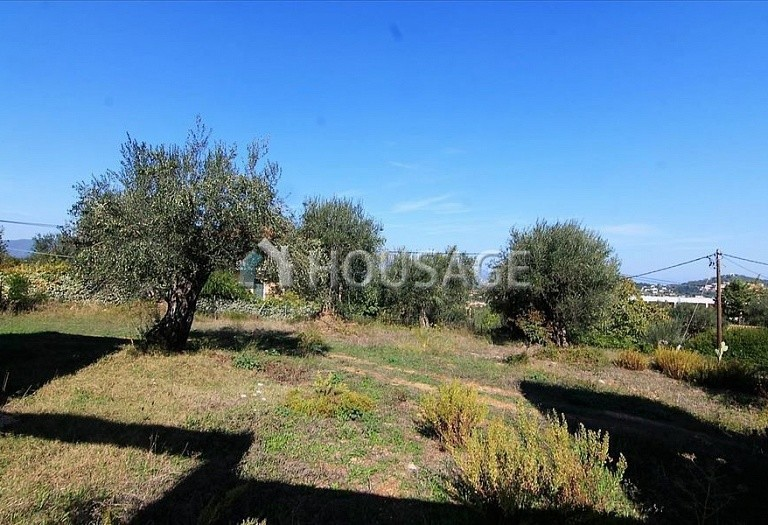 A house for sale in Kommeno, Kerkira, Greece, 300 m² - photo 14