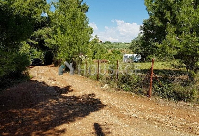 Land for sale in Nikitas, Sithonia, Greece - photo 1