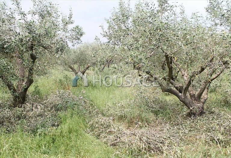 Land for sale in Epanomi, Salonika, Greece - photo 4