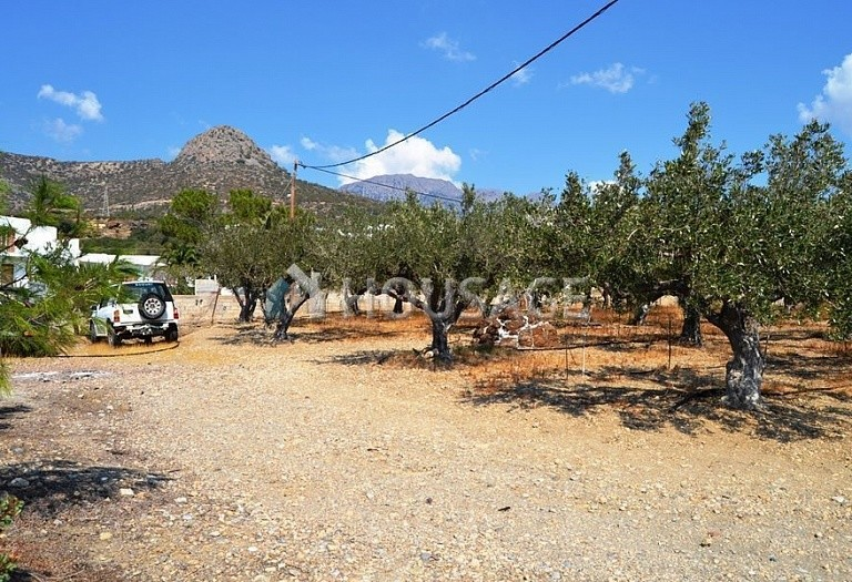 Land for sale in Makrygialos, Lasithi, Greece - photo 2