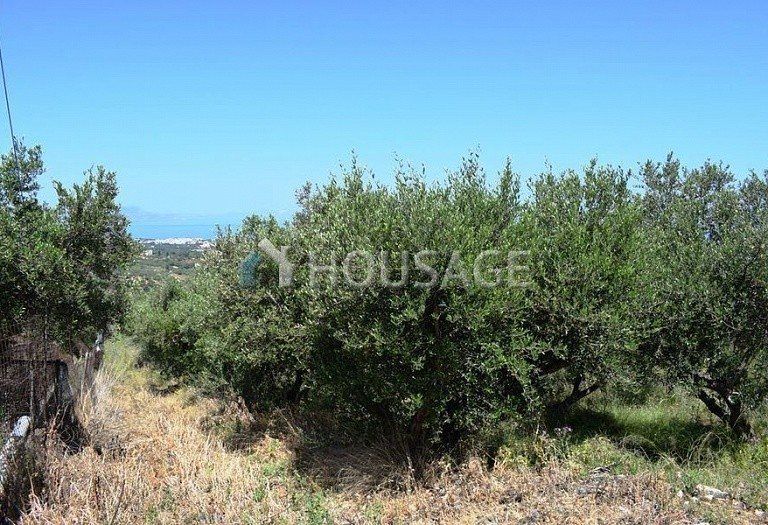 Land for sale in Rethymno, Rethymnon, Greece - photo 8