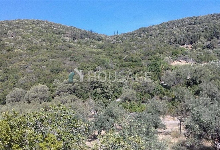 Land for sale in Pirgadikia, Sithonia, Greece - photo 3