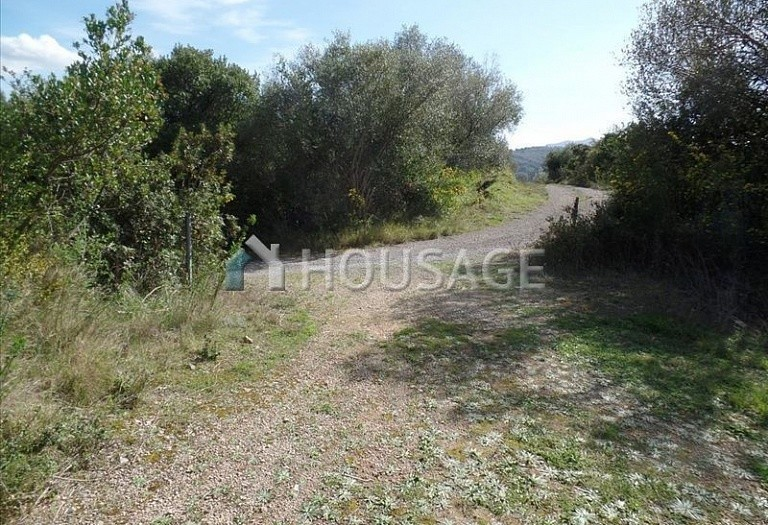 Land for sale in Kato Korakiana, Kerkira, Greece - photo 3