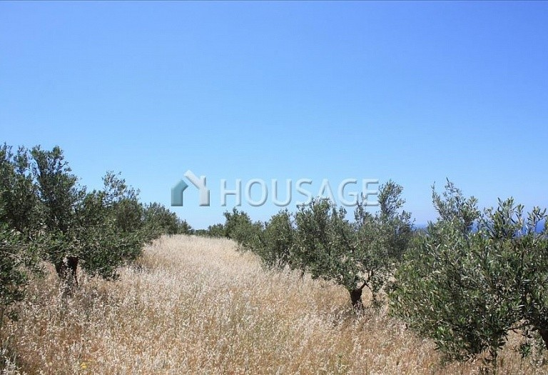 Land for sale in Chania, Greece - photo 2