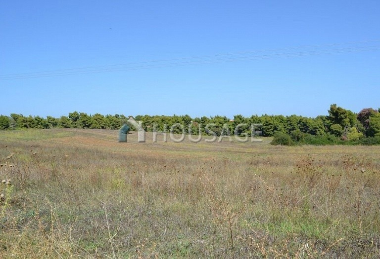Land for sale in Nea Fokaia, Kassandra, Greece - photo 6