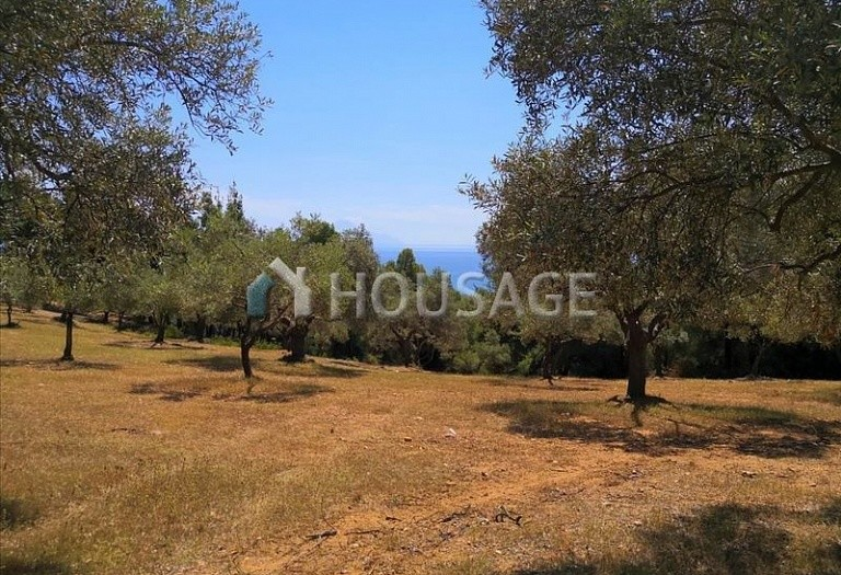 Land for sale in Agios Nikolaos, Sithonia, Greece - photo 7