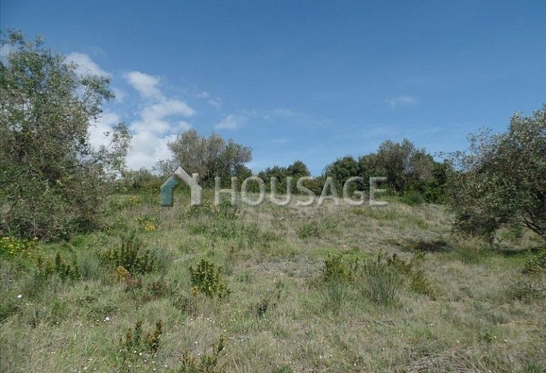 Land for sale in Kato Korakiana, Kerkira, Greece - photo 5