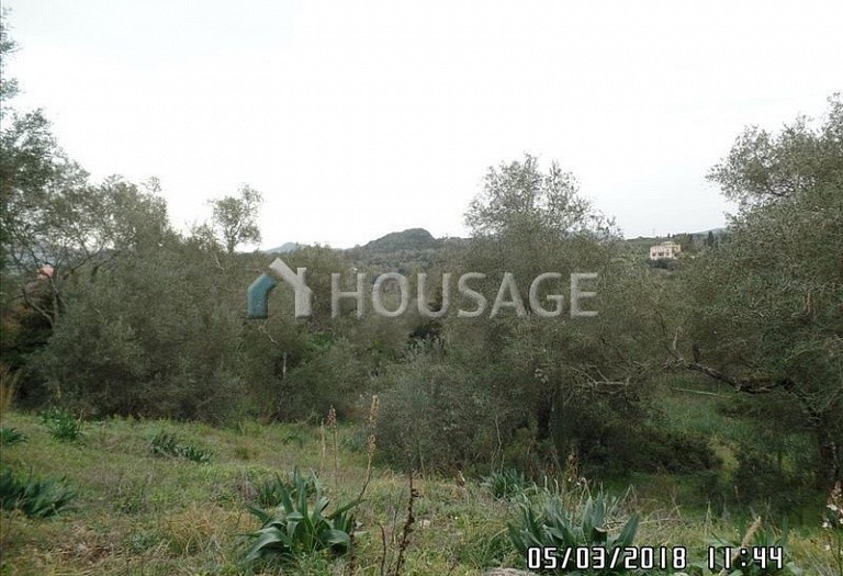 Land for sale in Poulades, Kerkira, Greece - photo 4