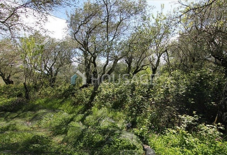 Land for sale in Spartylas, Kerkira, Greece - photo 1