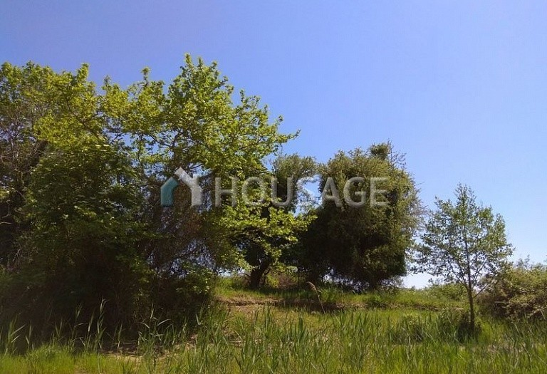 Land for sale in Stratoni, Chalcidice, Greece - photo 2