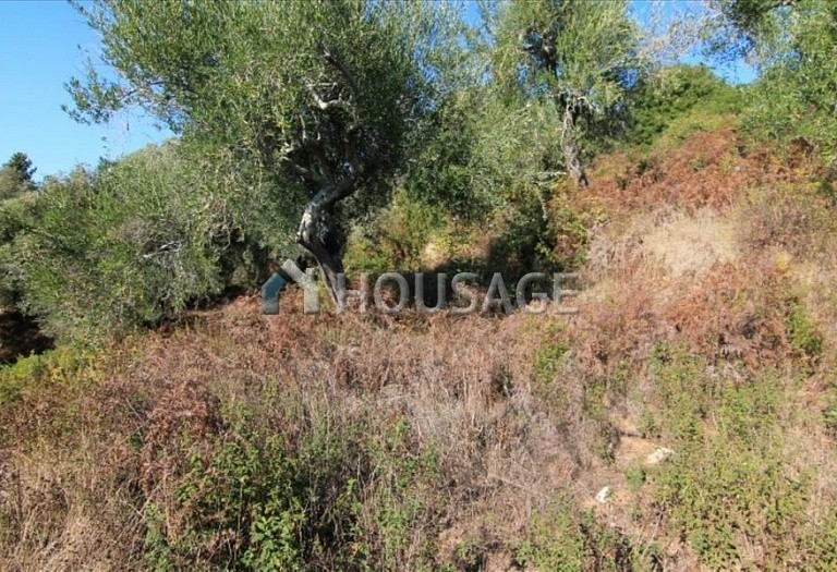 Land for sale in Viros, Kerkira, Greece - photo 4