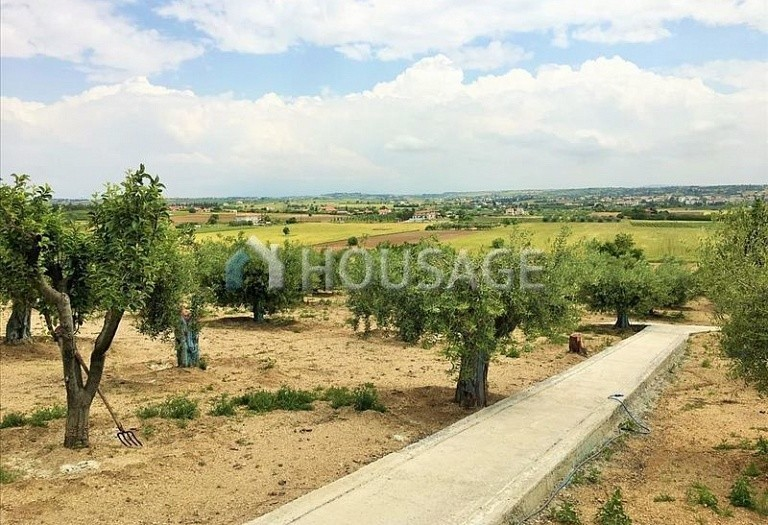 3 bed a house for sale in Epanomi, Salonika, Greece, 260 m² - photo 5