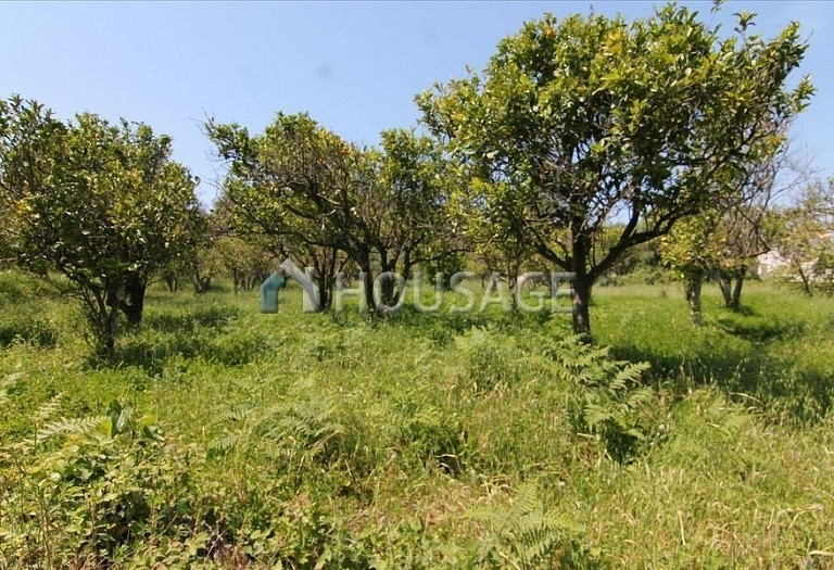 Land for sale in Astrakeri, Kerkira, Greece - photo 2