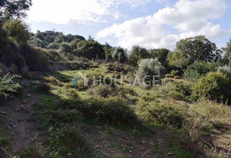 Land for sale in Armena, Rethymnon, Greece - photo 7