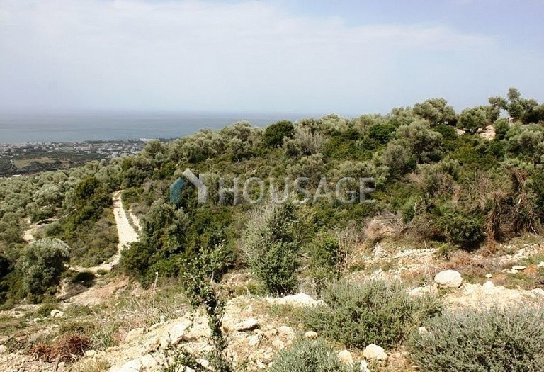 Land for sale in Adele, Chania, Greece - photo 5