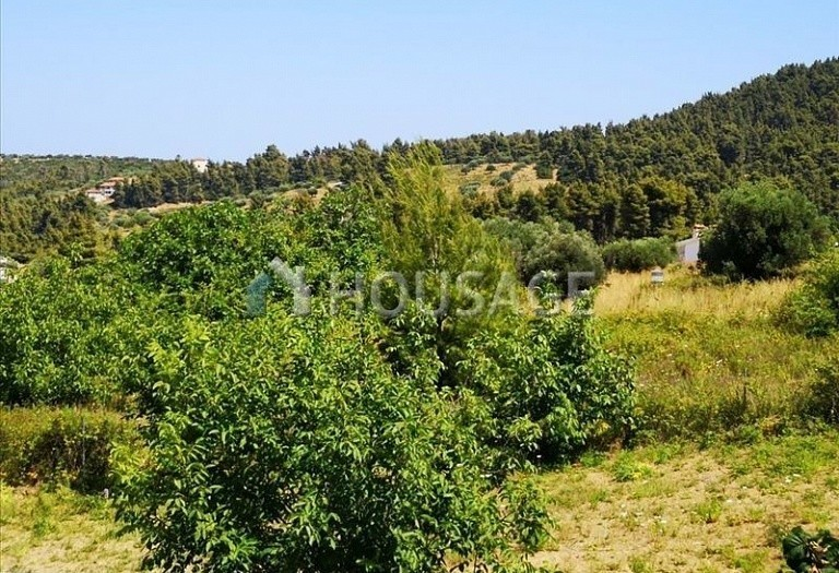 3 bed a house for sale in Paliouri, Kassandra, Greece, 210 m² - photo 16