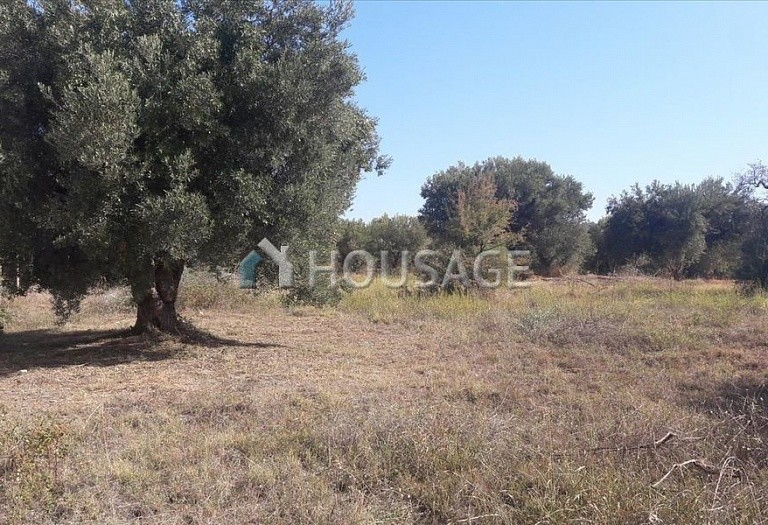 Land for sale in Nikitas, Sithonia, Greece - photo 3