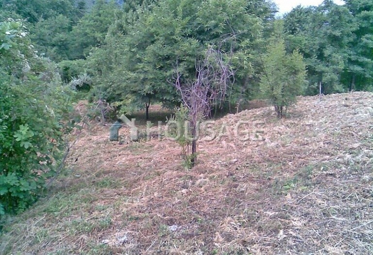 Land for sale in Tsangarada, Magnesia, Greece - photo 2