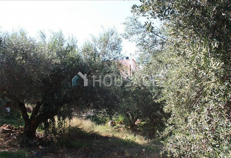 Land for sale in Kastellion, Chania, Greece - photo 3