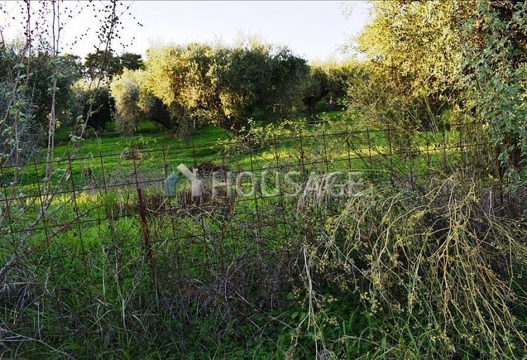 Land for sale in Kalyves, Chania, Greece - photo 6