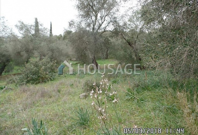 Land for sale in Poulades, Kerkira, Greece - photo 5
