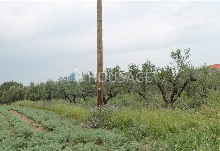 Land for sale in Epanomi, Salonika, Greece - photo 6