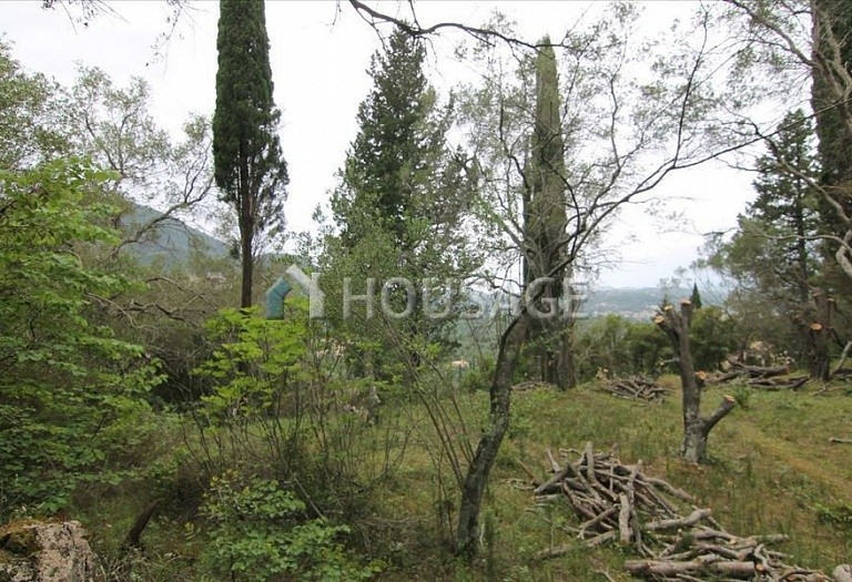 Land for sale in Gastouri, Kerkira, Greece - photo 8