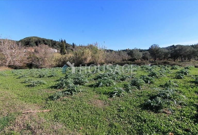 Land for sale in Kavvadades, Kerkira, Greece - photo 6
