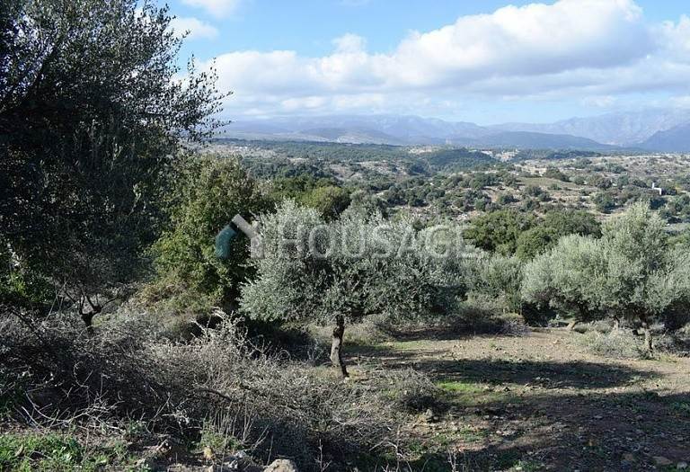 Land for sale in Armena, Rethymnon, Greece - photo 6