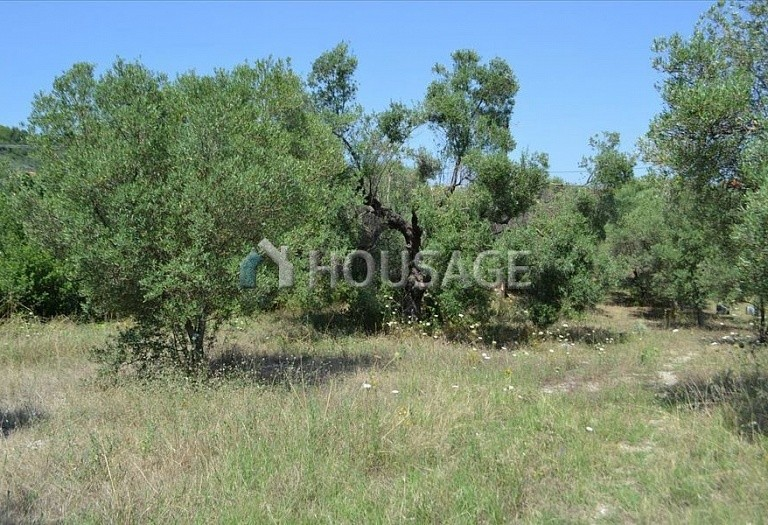 Land for sale in Hanioti, Kassandra, Greece, 1000 m² - photo 5