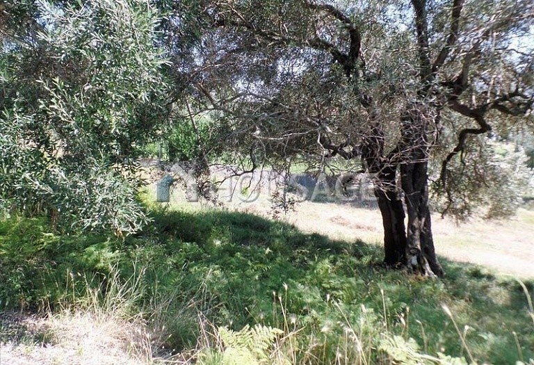Land for sale in Kanali, Kerkira, Greece - photo 4