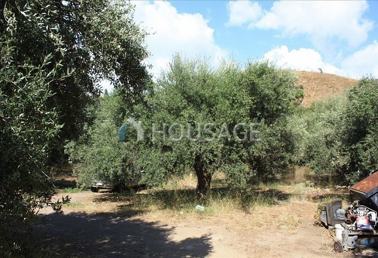 Land for sale in Kastellion, Chania, Greece - photo 2