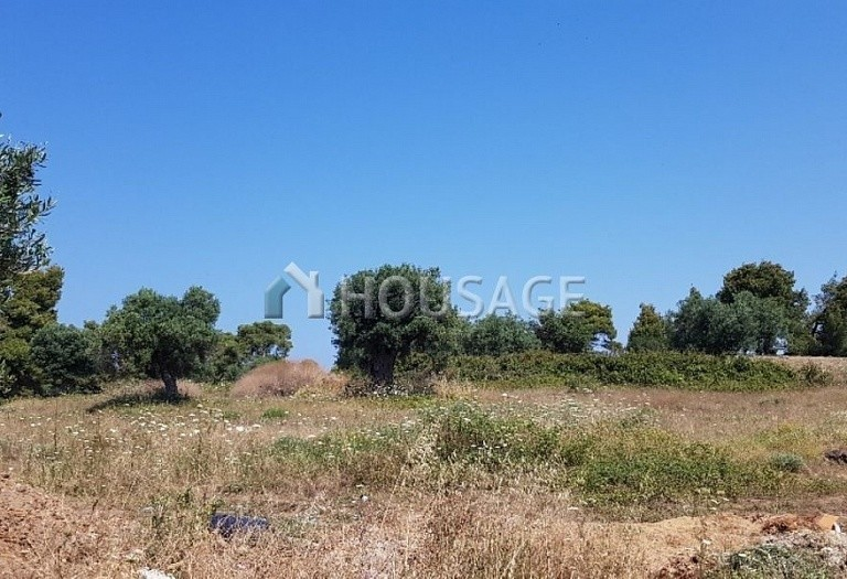 Land for sale in Posidi, Kassandra, Greece - photo 4