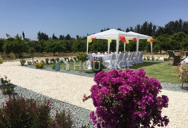 4 bed villa for sale in Timi, Pafos, Cyprus - photo 4