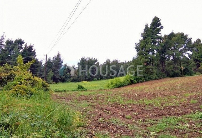 Land for sale in Kriopigi, Kassandra, Greece - photo 2