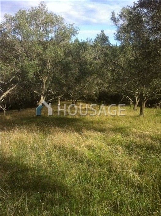 Land for sale in Ag. Georgios Pagon, Kerkira, Greece - photo 1