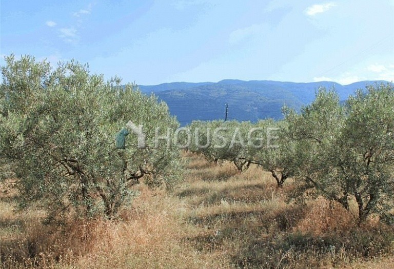 4 bed a house for sale in Leptokarya, Pieria, Greece, 200 m² - photo 7
