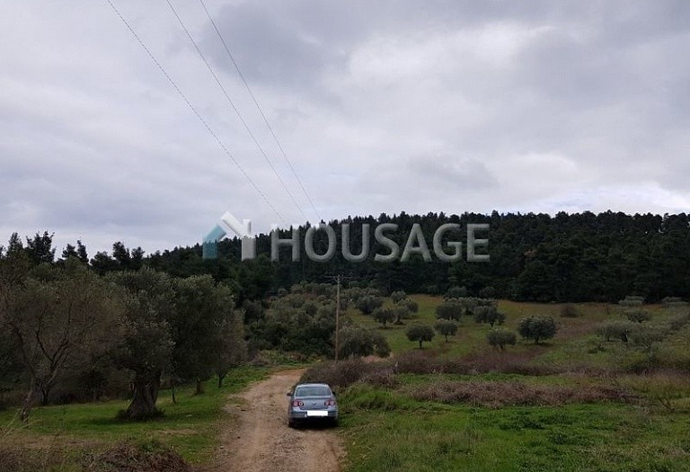 Land for sale in Paliouri, Kassandra, Greece - photo 5