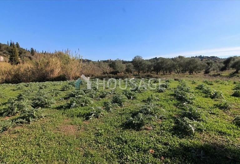 Land for sale in Kavvadades, Kerkira, Greece - photo 2