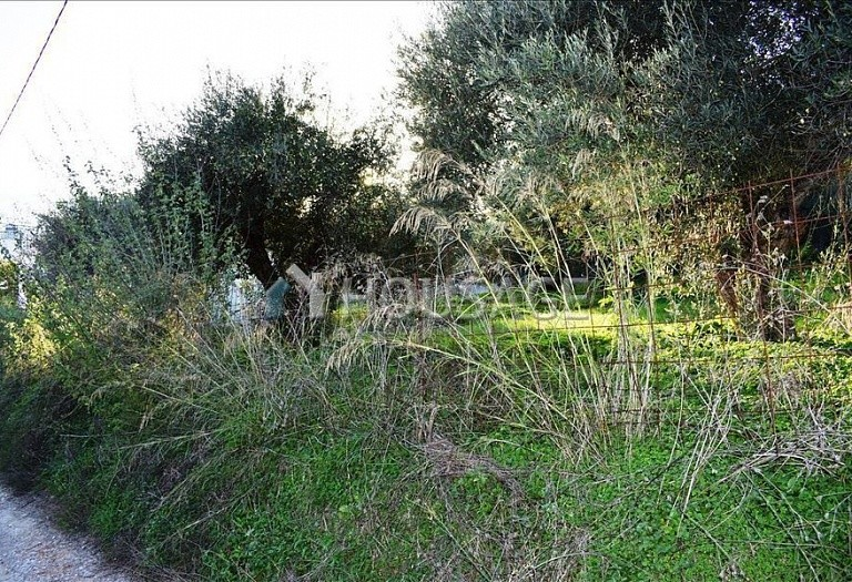 Land for sale in Kalyves, Chania, Greece - photo 3