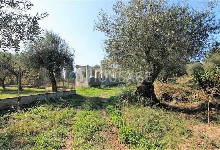 A house for sale in Kommeno, Kerkira, Greece, 300 m² - photo 9